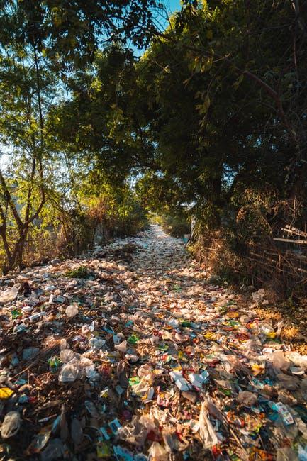 limpieza por acumulación compulsiva en Bigues i Riells